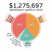 Grants issued in 2019